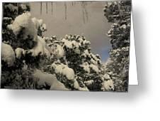 Springtime Icicles Greeting Card