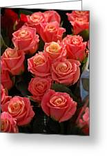 Springtime Roses Greeting Card
