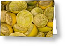 Squeezed Key Lime Halves Greeting Card