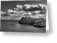 St Catherines Rock Tenby Greeting Card by Steve Purnell