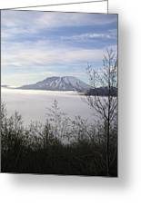St Helens Fog Trees Greeting Card