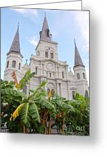 St Louis Cathedral Rising Above Palms Jackson Square French Quarter New Orleans Print  Greeting Card