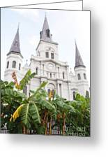 St Louis Cathedral Rising Above Palms Jackson Square New Orleans Diffuse Glow Digital Art Greeting Card