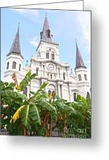 St Louis Cathedral Rising Above Palms Jackson Square New Orleans Film Grain Digital Art Greeting Card