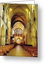 St. Patricks Cathedral, Dublin, Ireland Greeting Card