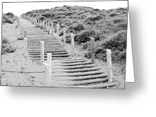 Stairs At Baker Beach Greeting Card by Shane Kelly