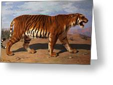 Stalking Tiger Greeting Card