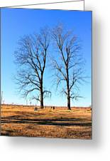 Standing Alone Together Greeting Card
