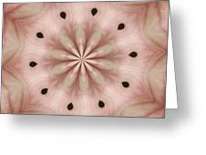 Star Magnolia Medallion 5 Greeting Card