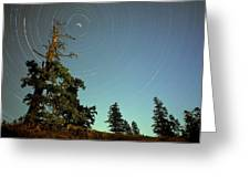 Star Trails, North Star And Old Douglas Greeting Card