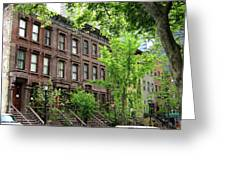 Stately Ny Street Greeting Card