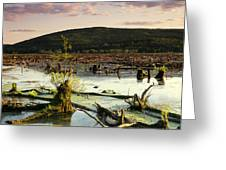 Stater Pond At Sunset Greeting Card