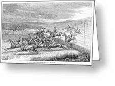 Steeplechase, 1863 Greeting Card