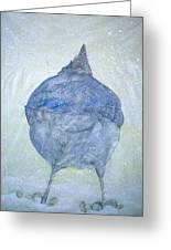 Stellar Jay From  Back Greeting Card by Debbi Saccomanno Chan