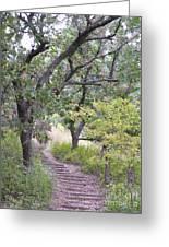 Steps Trail Greeting Card