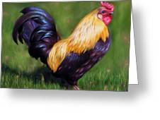 Stewart The Bantam Rooster Greeting Card