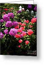 Stock And Fence Greeting Card