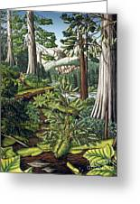 Stoltman Old Growth Forest Landscape Painting Greeting Card
