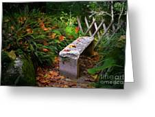 Stone Bench Greeting Card by Carlos Caetano
