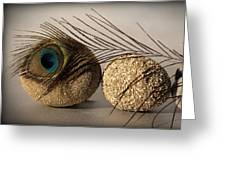 stone fish - A a peacock feather and four pebbles become a sea creature in artist mind Greeting Card