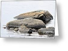 Stone In Calm Water Greeting Card by Conny Sjostrom