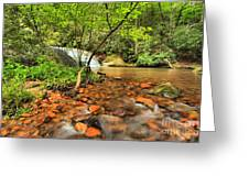 Stone Mountain Lower Falls Greeting Card