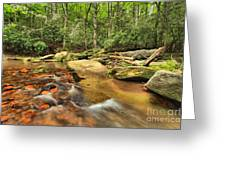 Stone Mountain Stream Greeting Card