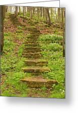 Stone Step Trail 1 Greeting Card