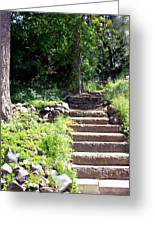 Stone Steps Greeting Card by Myrna Migala