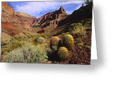 Stonecreek Canyon In The Grand Canyon Greeting Card