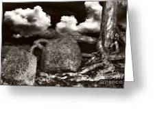 Stones And Roots Greeting Card