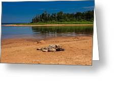 Stones On The Beach Greeting Card