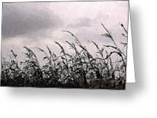 Storm A'comin' Greeting Card