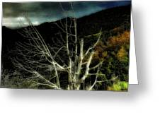 Storm Over The Jemez Mountains Greeting Card
