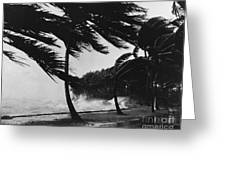 Storm Surge Greeting Card by Omikron