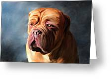 Stormy Dogue Greeting Card