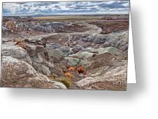 Stormy Morning At Petrified Forest  Greeting Card