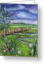 Stormy Wetlands Greeting Card
