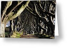 Stranocum, Co. Antrim, Ireland Greeting Card