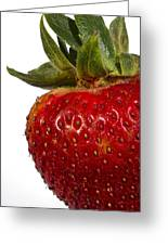 Strawberry Close Up No.0011 Greeting Card