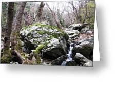 Skotina Springs Greeting Card