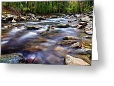 Stream Greeting Card