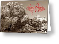 Street Scene Merry Christmas Greeting Card