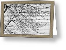 Striations Greeting Card