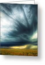 Striations Overhead Greeting Card