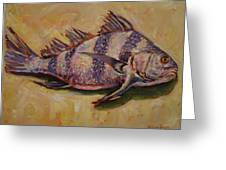 Striped Drum Fish Greeting Card