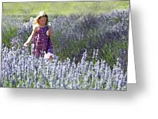 Stroll Through The Lavender Greeting Card
