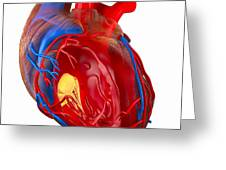 Structure Of A Human Heart, Artwork Greeting Card