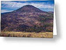 Studies In Sugarloaf Peak 4 Greeting Card