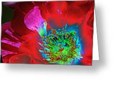 Stylized Flower Center Greeting Card